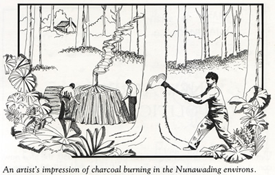 Charcoal burners in Nunawading in the1850's